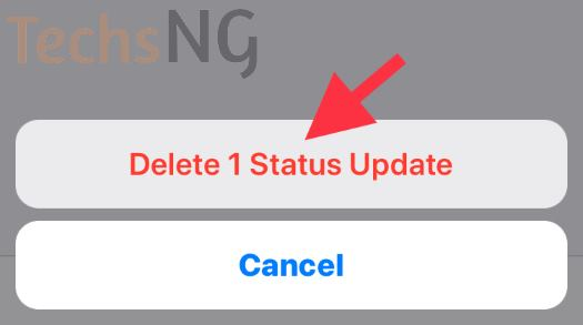 Confirm deleting the whatsapp status update on iPhone
